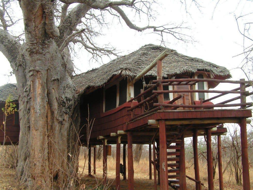 Tarangire Tree Tops