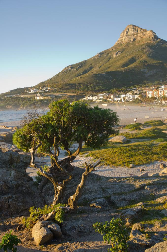 Camps Bay © Jeff McClay