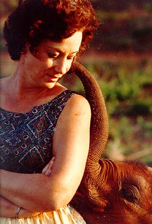 A young Daphne and Orphaned Elephant
