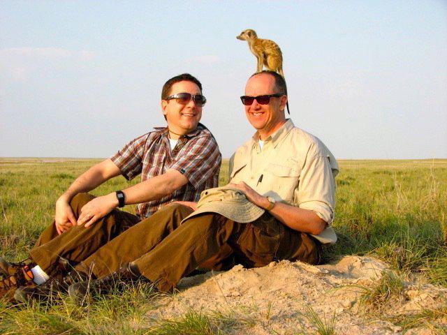 african-safari-consultants-meerkat