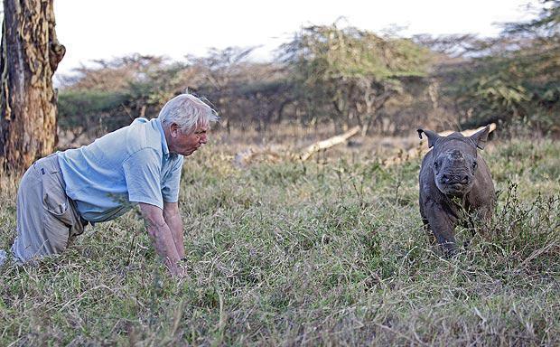 david-attenborough-africa