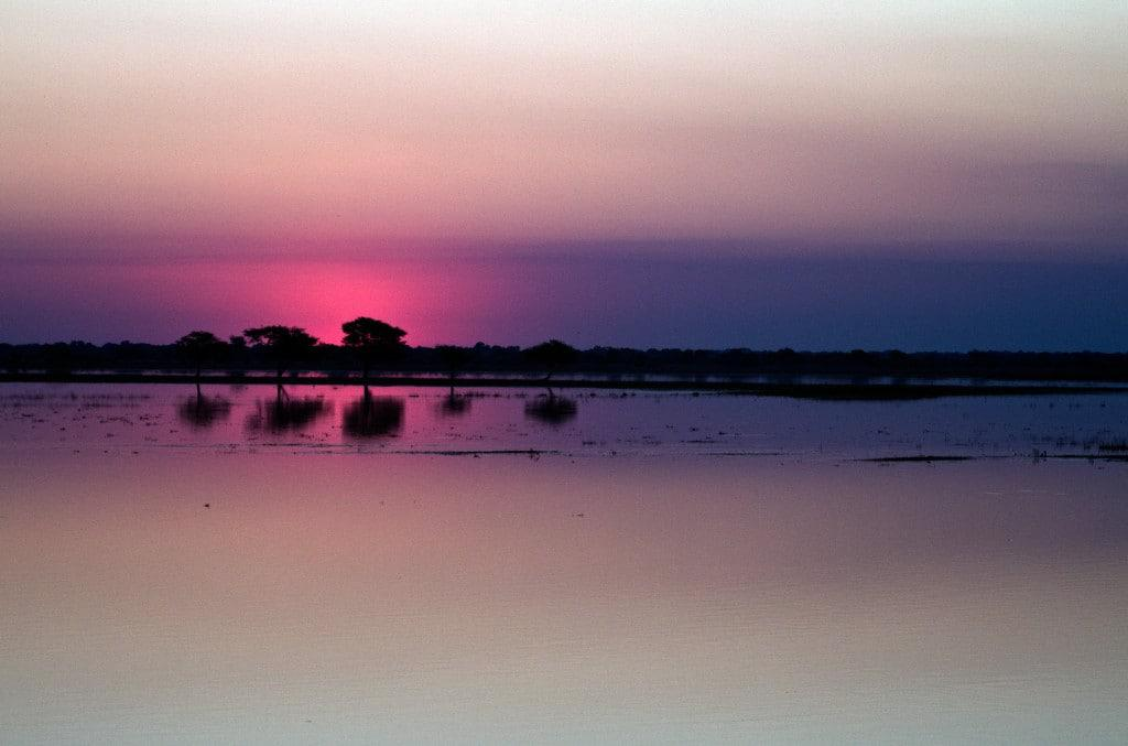 Sunset over the Okavango Delta.