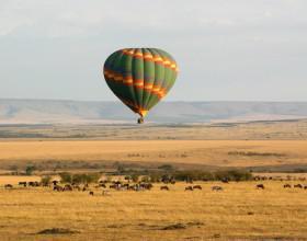 serengeti 600x350
