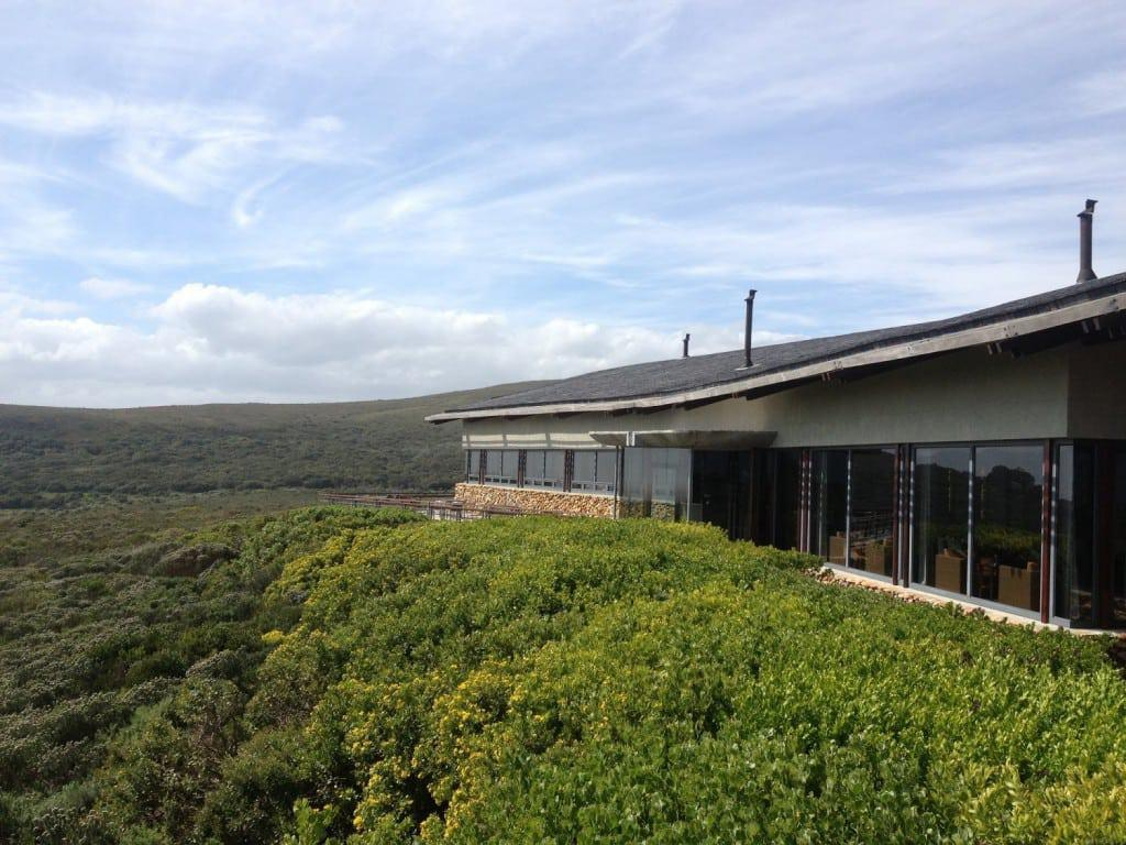 grootbos_forest_lodge