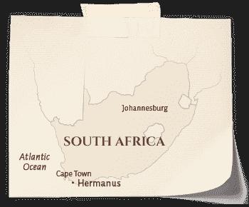 SA_Hermanus