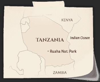 Tanzania_Ruaha