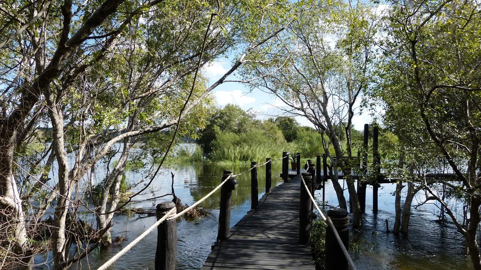 islands of siankaba rope bridge