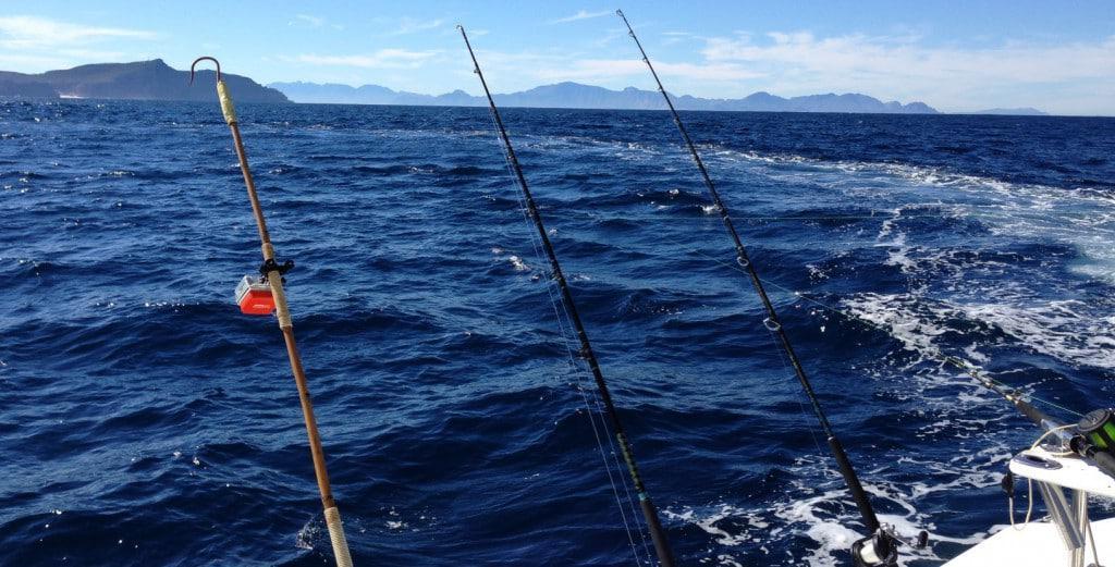 Deep Sea Fishing Cape Town