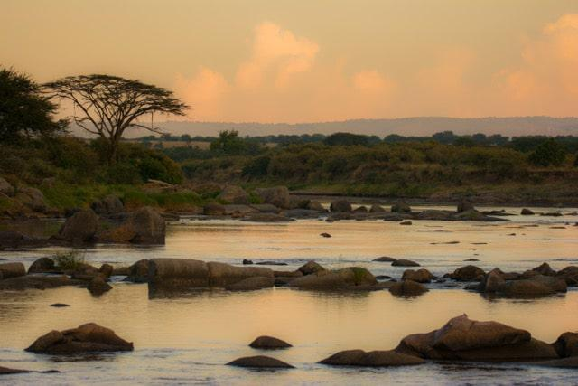 Dawn breaking over the Mara river - a tranquil scene by comparison to the mayhem that will follow as Wildebeest crossover in August and September