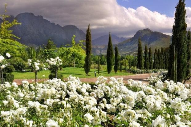 F Open Gardens Grande Provence