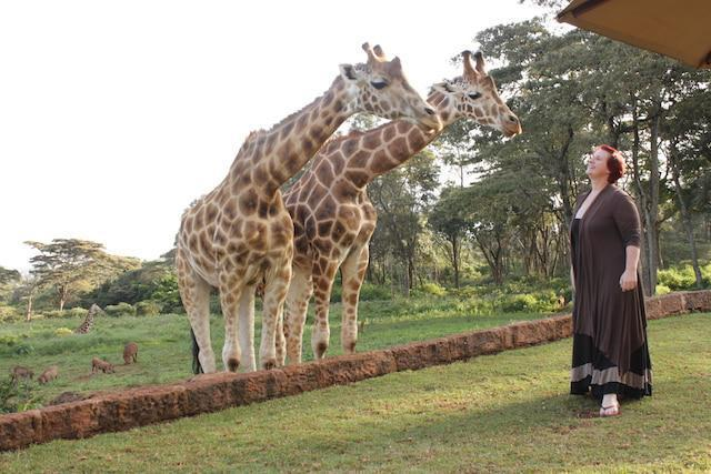 giraffe manor2