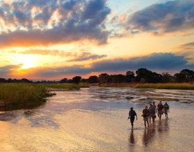 walking safari zambia sunset