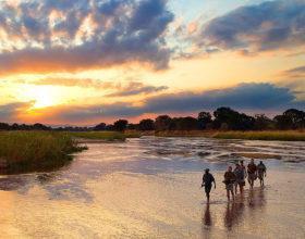walking safari zambia sunset