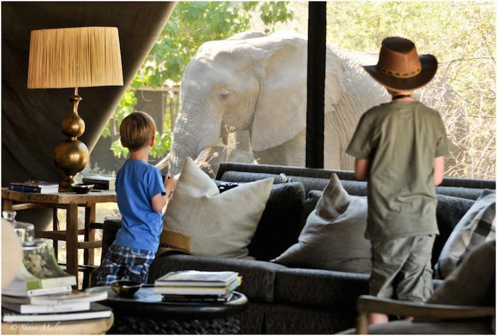 family safaris kids with elephant
