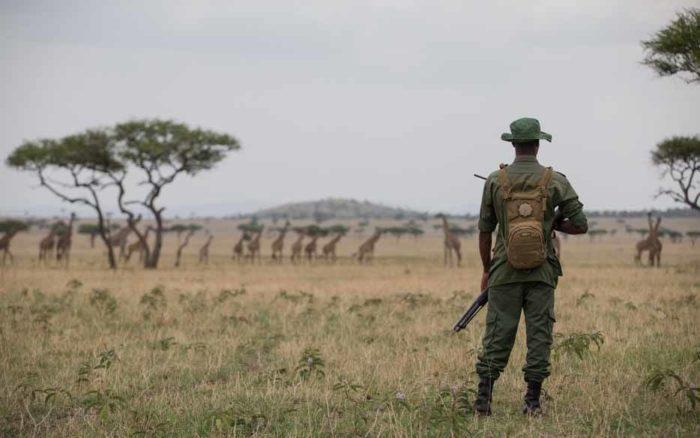 Anti-poacher at Singita Grumeti Fund Tanzania