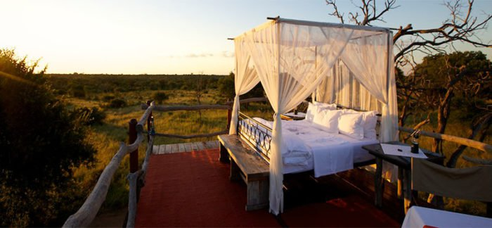 kapama private game reserve South-Africa
