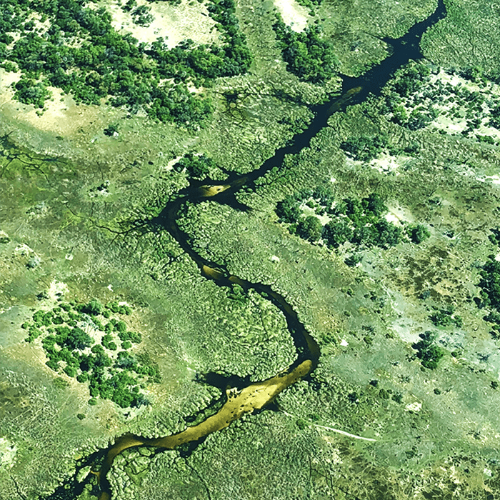 Aerial view of the twisting turns of the Okavango Delta
