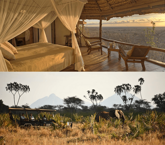 The view from Elsa's Kopje and a game drive with elephants in Meru National Park, Kenya