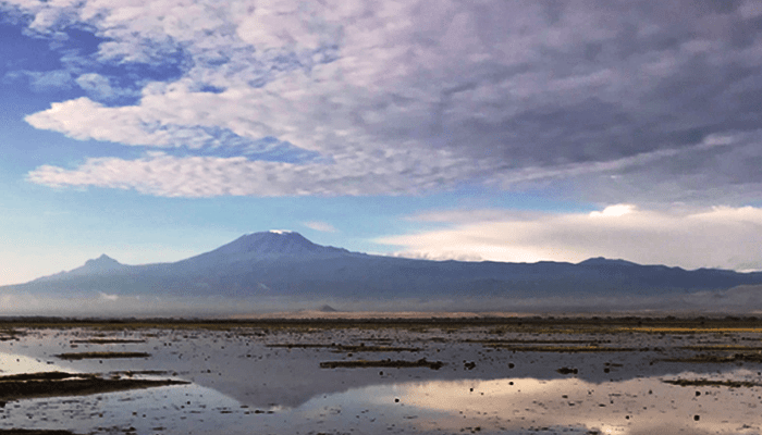 Snow-capped Kilimanjaro reflection in water in Amboseli National Park