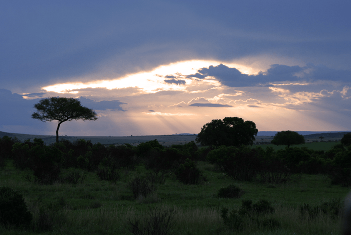 masai mara sunset_african safaris