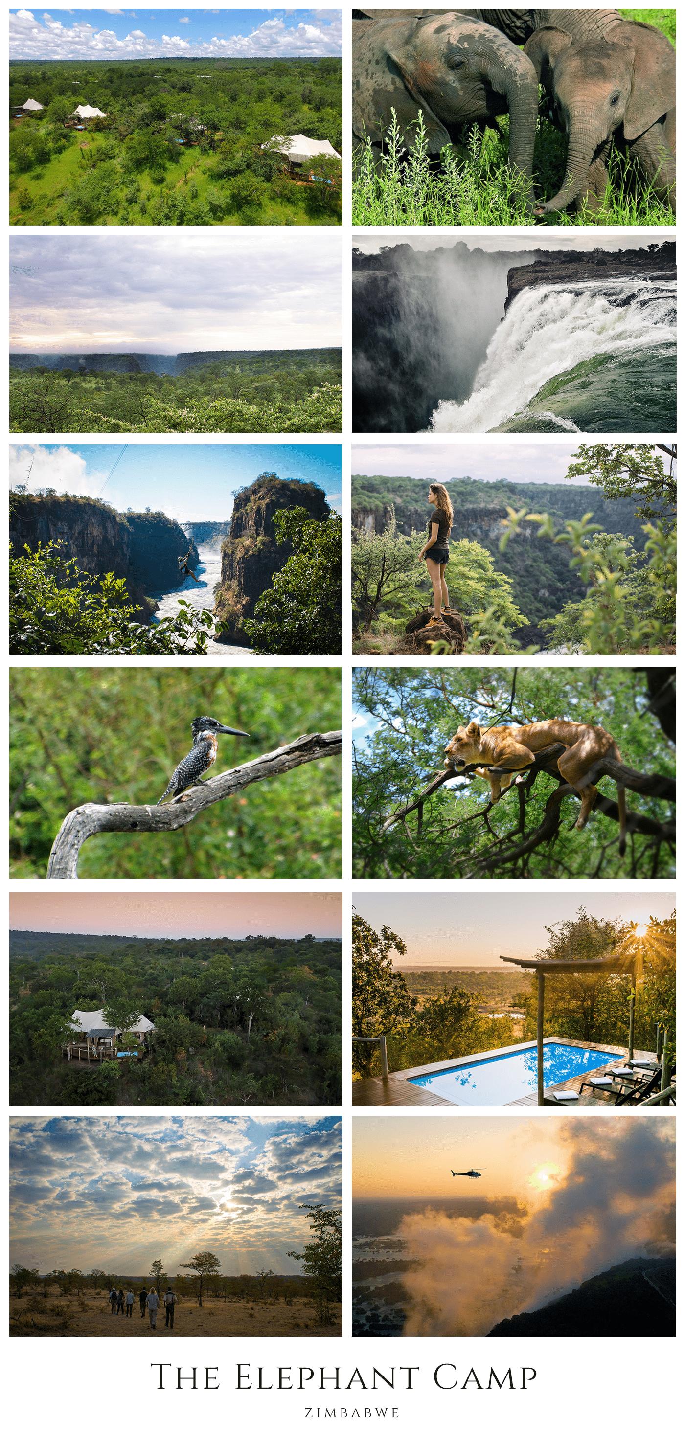 The Elephant Camp near Victoria Falls in Zimbabwe - African Safaris