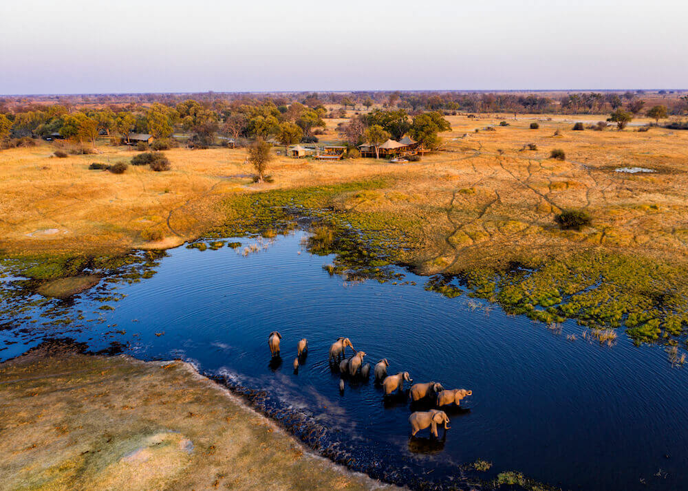 Tuludi Camp: ellies in river - Khwai Private Reserve, Botswana - African Safaris