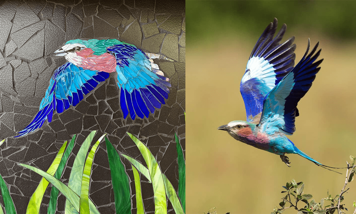 Khwai Private Reserve is a bird-lover's paradise! Thought to be monogamous, and unusually with both male and female having the same coloring, lilac-breasted rollers have a fascinating courtship flight, diving from extreme heights, rocking and rolling! Just mesmerizing!