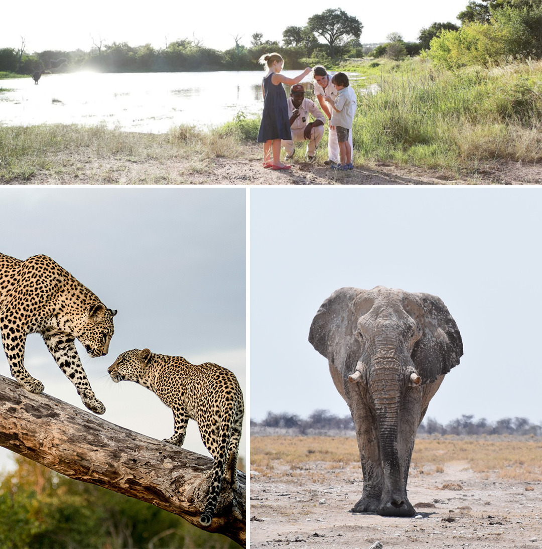 Africa transforms people at the soul level - African Safaris
